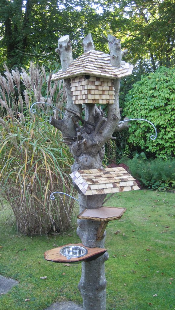 Bespoke bird feeder built into tree trunk by Rob Rendall